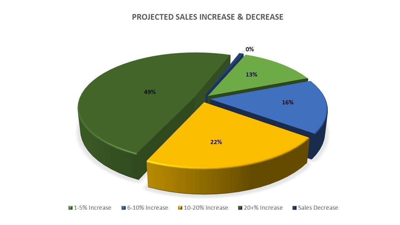 Sales Pie Chart